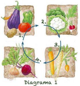 Rotacion de Cultivos digrama1