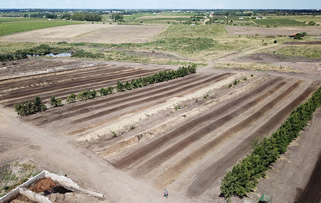 BioTerra - Planta de compostaje